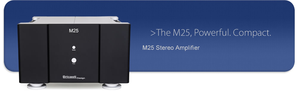 M25 stereo amplifier