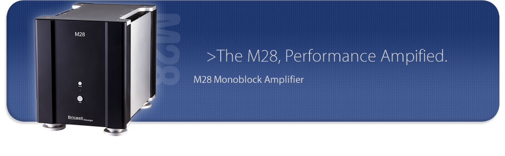 M28 Monobolck Amplifier